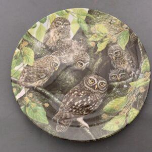 Dandbury Mint Safe in the Nest
