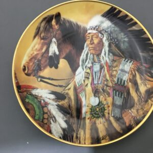 Franklin Mint American Indians