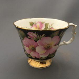 Provincial Flowers Alberta Rose