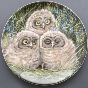 Wedgwood The Baby Owls
