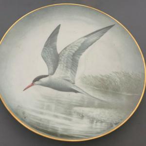 Franklin Porcelain Limoges International Council For Birds Preservation